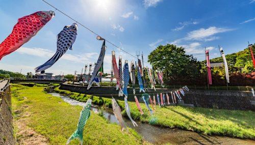 こどもの日 この祝日どういう祝日かご存知ですか?江戸時代までは死傷者がでる風習もあった。